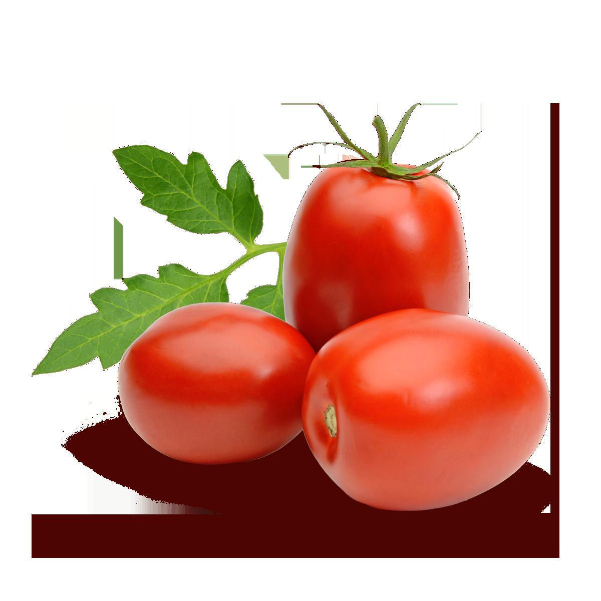 pomodori agricola fratepietro puglia olive bella di cerignola
